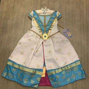 Jasmine Dreams Come True Dress (Aladdin)